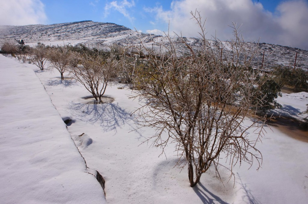 Snow settles on Jebel Jais mountain in Ras al Khaimah, Janaury 24, 2009. This is the second time it snows there in recorded history. Photo HO