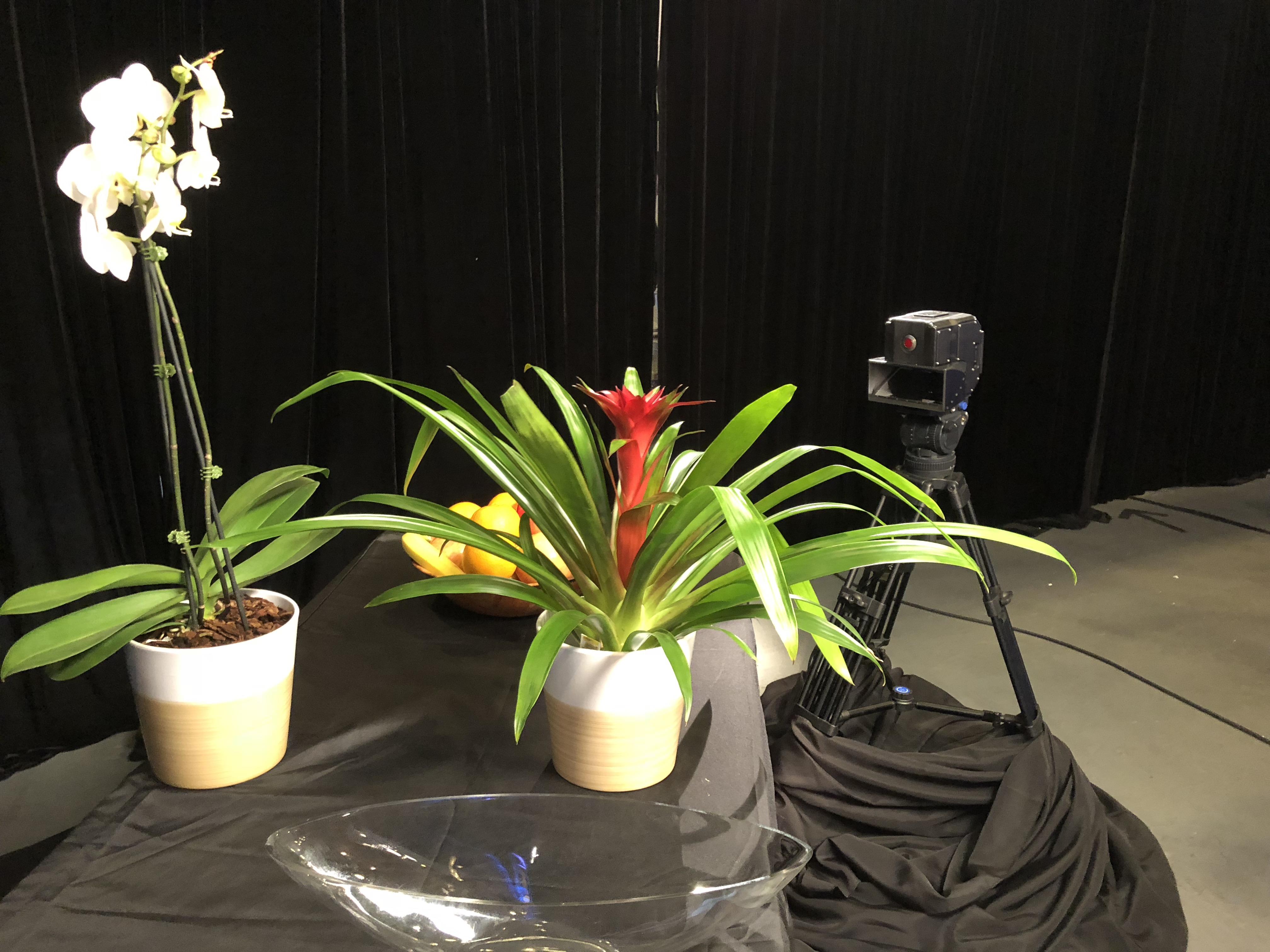 3d camera demo