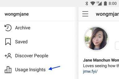 Instagram Usage Insights Menu