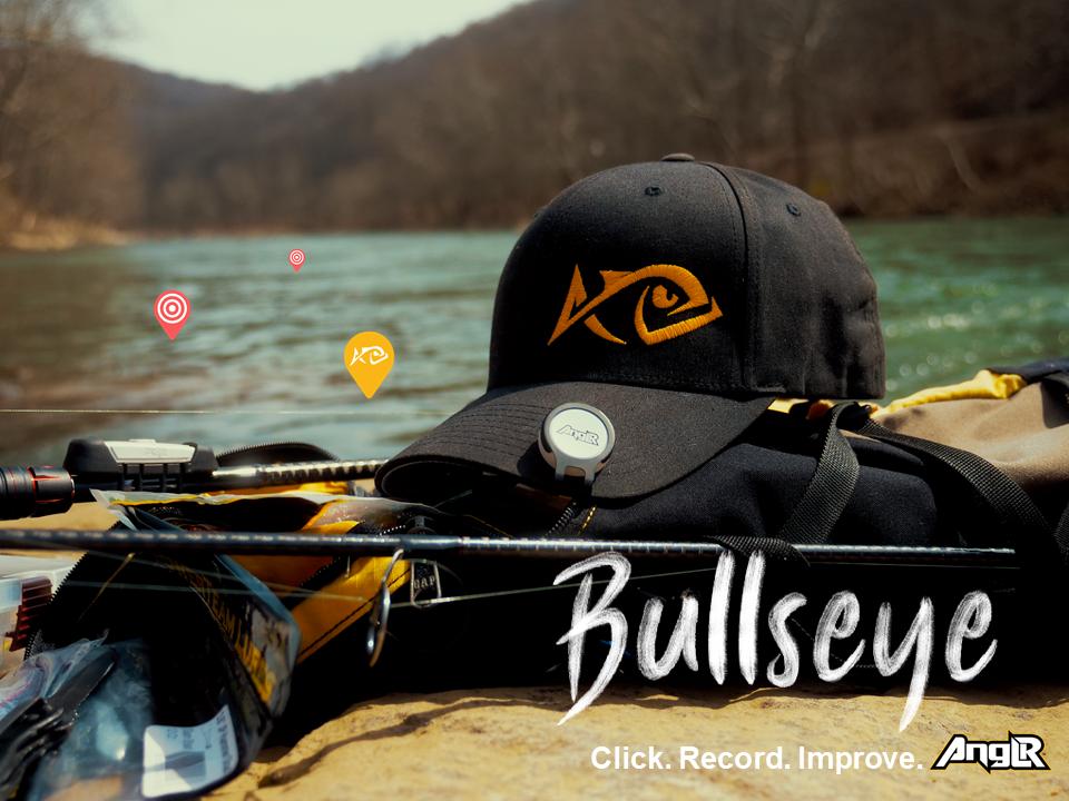 Bullseye 21