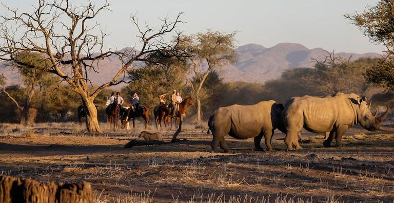 Okapuka Horse Safari